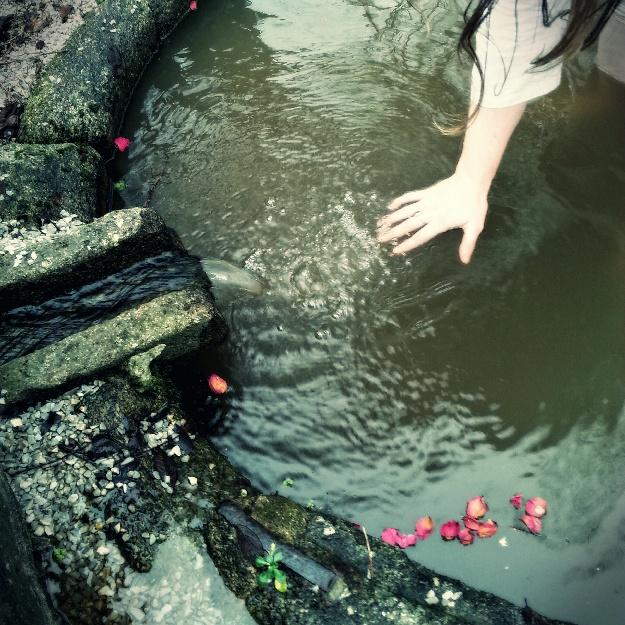 Eau lustrale d'une fontaine dans laquelle une main de femme se plonge